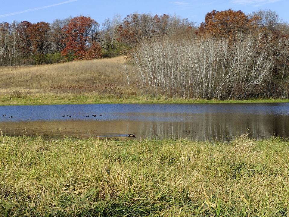 hyland lake park reserve This scenic retreat in the heart of bloomington features prairie landscapes, waterfront views of hyland lake, an 18-hole disc golf course, hiking trails and more.