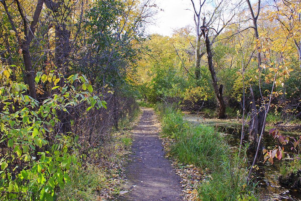 Minnesota Seasons - Minnesota Valley National Wildlife ...