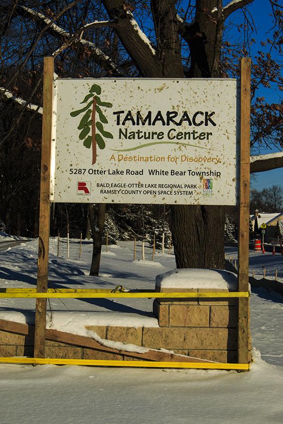 Tamarack Nature Center Discovery Hollow