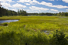 Itasca Wilderness Sanctuary SNA
