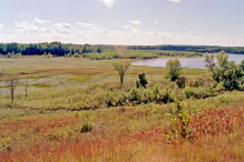 Louisville Swamp Unit, Minnesota Valley NWR